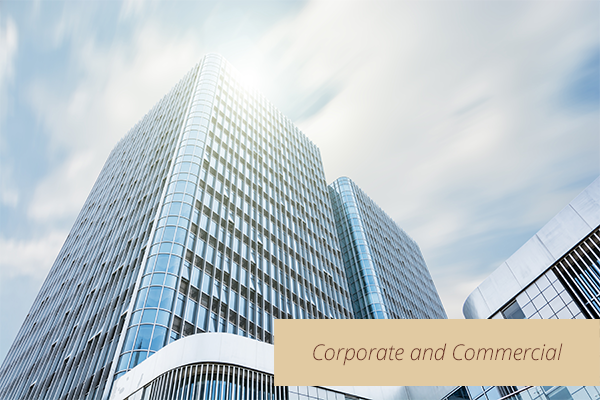Econorisk corporate and commercial
