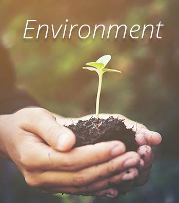 Econorisk environment