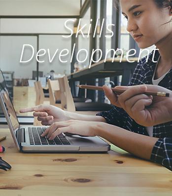 Econorisk skills development